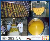 Pineapple Mango Processing Line , Fruit Juice Mango Pulp Processing Plant