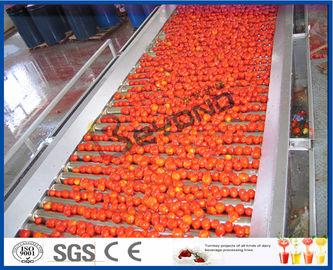 Ντομάτα που φυτεύει τη γραμμή επεξεργασίας ντοματών μηχανών πλήρες/ημι αυτόματο 2 - 50 T/H